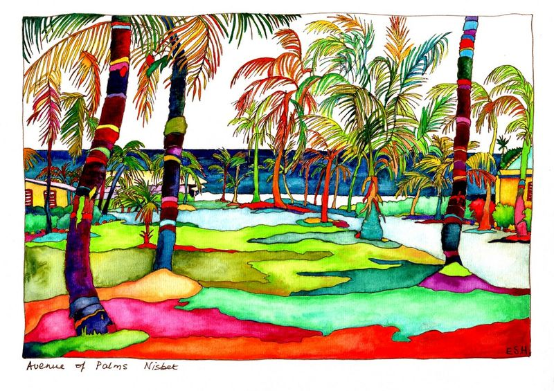 *Avenue of Palms Nisbet Nevis