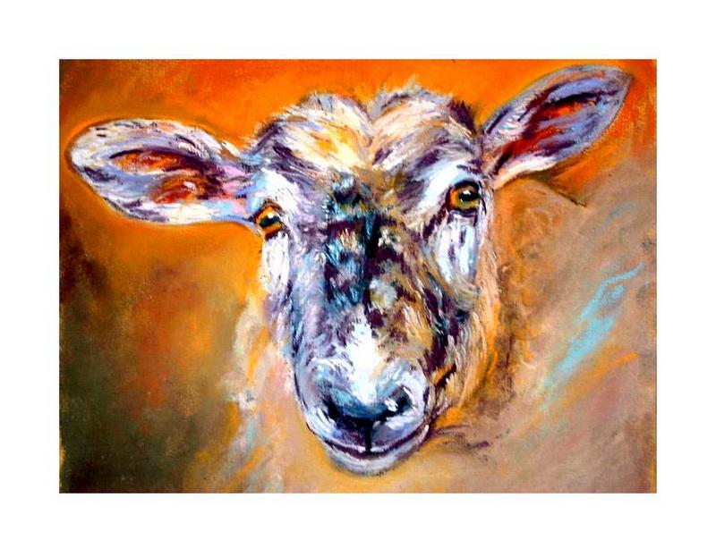 The Sheeps Head