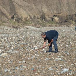 Activity - Beachcombing