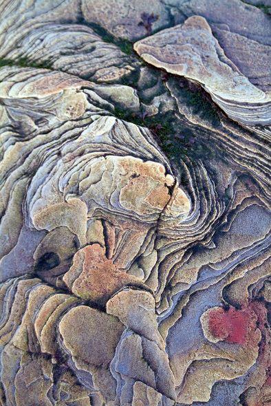 Beadnell Beach Rocks