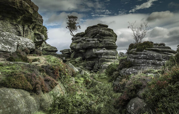 2nd. Brimham Rocks. Brian Nattrass. Judge: Mavis McCormack