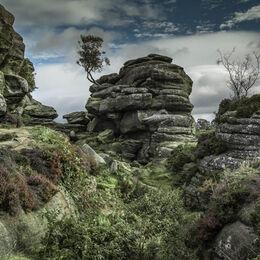 2nd. Brimham Rocks. Brian Nattrass. Judge: Mavis McCormack