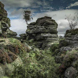 2nd. Brimham Rocks. Brian Nattrass. Judge: Mavis NcCormack