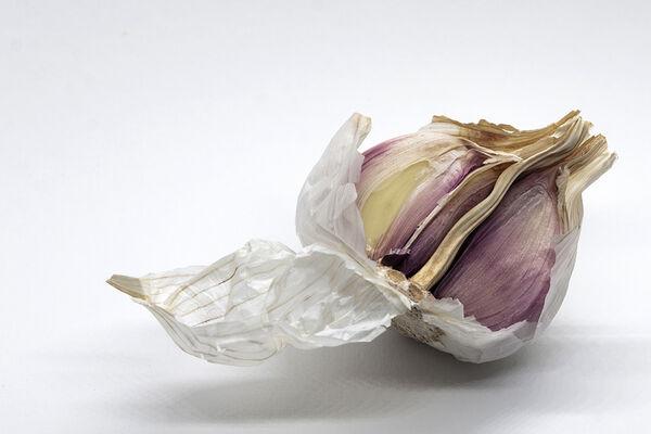 H.C. Garlic. Gayle Hall. Judge: Sue Merrington.