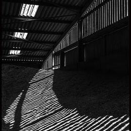Highlights and shadows
