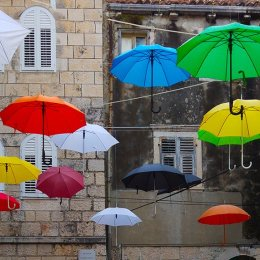 2nd. Umbrellas. Pauline Brighton. Judge: Sue Merrington