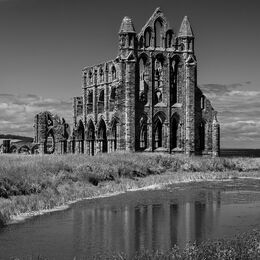 H.C. Whitby Abbey. David Gray. Judge:Gerry Adcock.