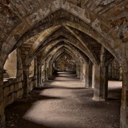 finchale arches 1