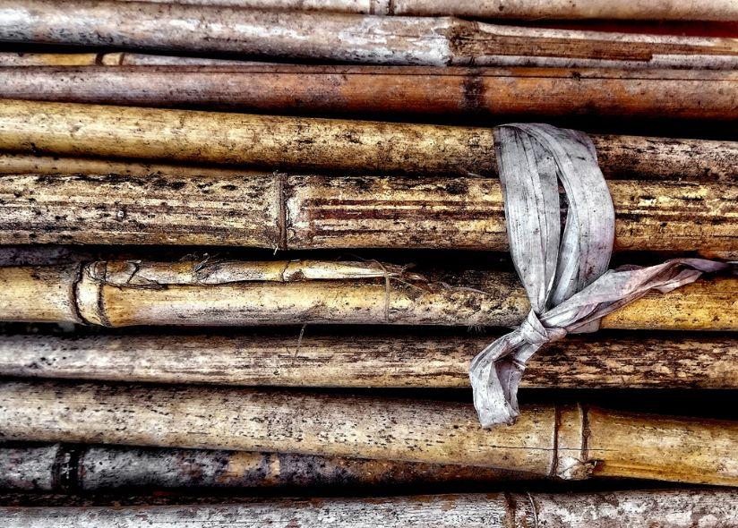 Garden canes