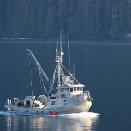 2nd. Gone fishing. John Geddes. Judge: David Illingworth.