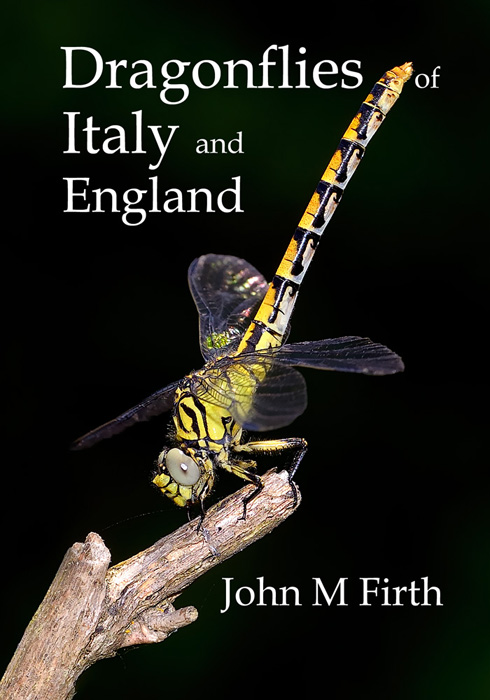 Dragonflies - new book