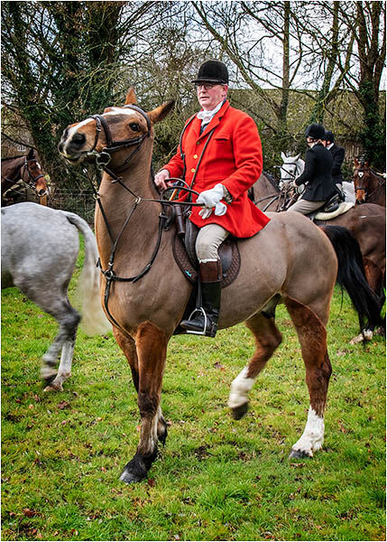 Master of the Fox Hounds - Charlton near Chichester