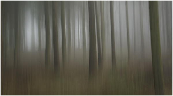 7 - Peakhill in mist