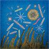 #8 Early unicellular algae & primitive multicellular life