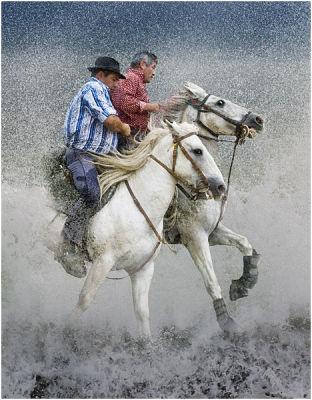 Camargue riders