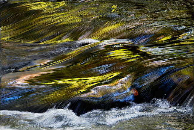 Autumn colours in the River Plym