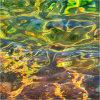 Nature's intertidal gems #1