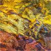 Nature's intertidal gems #14