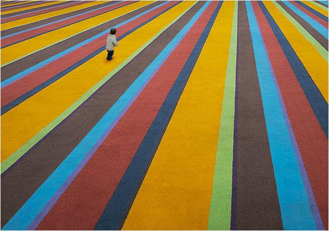 On the carpet