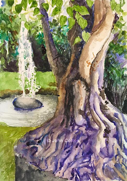 Tree & fountain