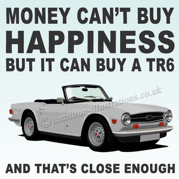 TR6 White Happiness White HT421