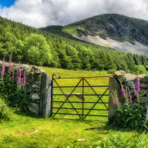 Country Gate at Aber Falls