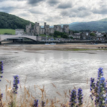 Conwy Castle Framed
