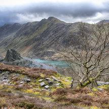 Wild Snowdonia