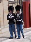 Danish Royal Guards
