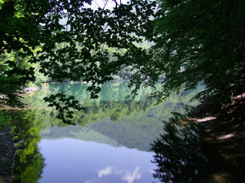 Reflections, Biogradska Gora National Park Lake