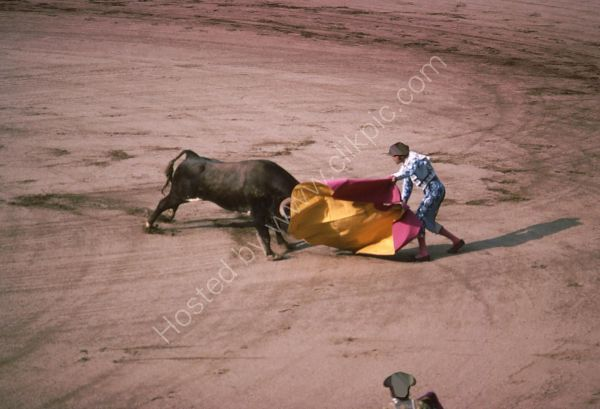 Bull Fight, Madrid