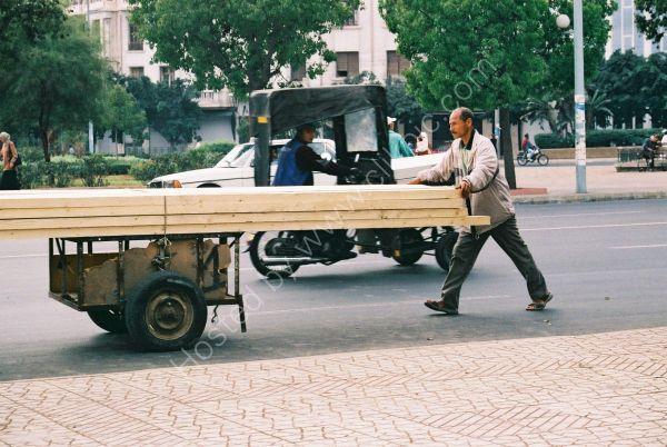 Transporting Timber, Casablanca