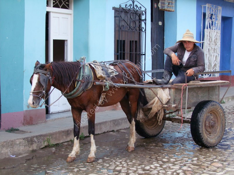 Cuban with Horse & Cart, Trinidad