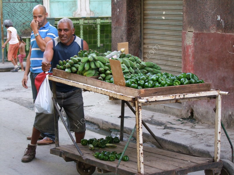 Cuban Plantain Seller