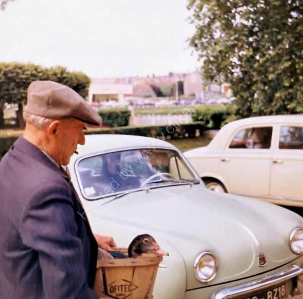 Frenchman to Market, Loire Valley