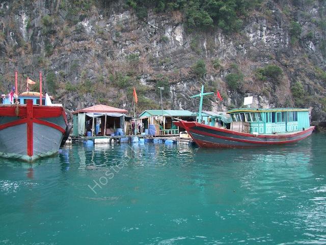 Fishing Boats at Floating Fishing Village, Halong Bay