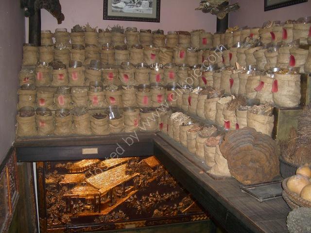 Medicinal Herbs, Bao Tang PHITO (Museum of Vietnamese Traditional Medicine), Ho Chi Minh City