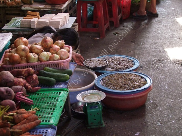 Shrimp Seller, Hoi An Market