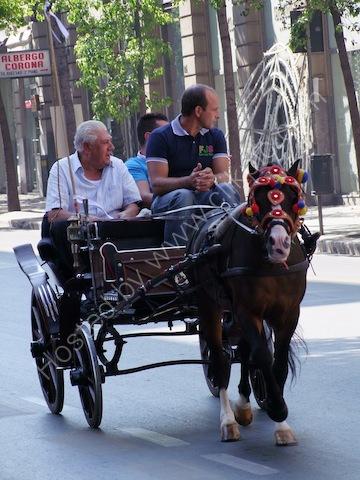 Sicilians in Horse & Carriage, Via Roma, Palermo