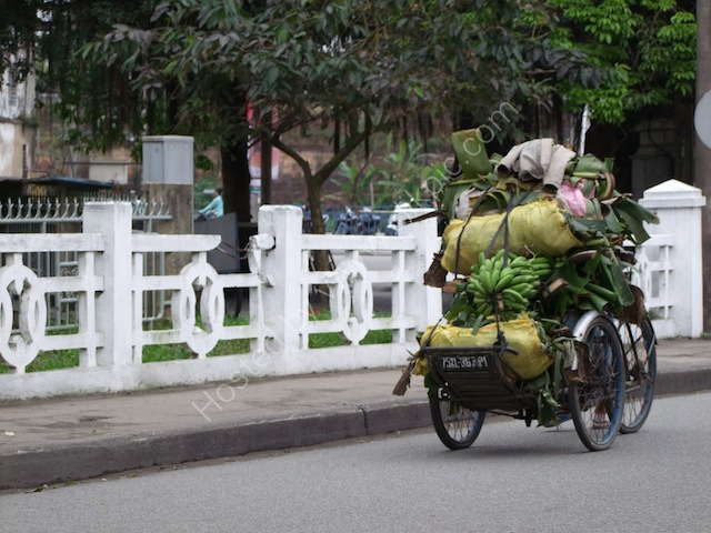 Carrying Fruit Load on Cyclo, Hue