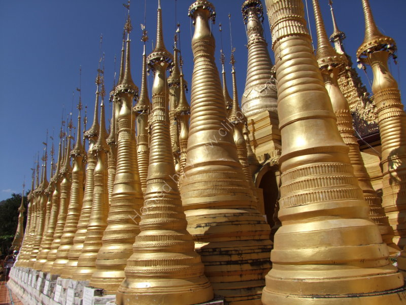 Forest of Gold Stupas