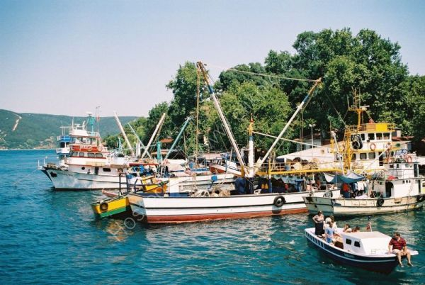 Fishing Boats on the Bosphorus, Turkey