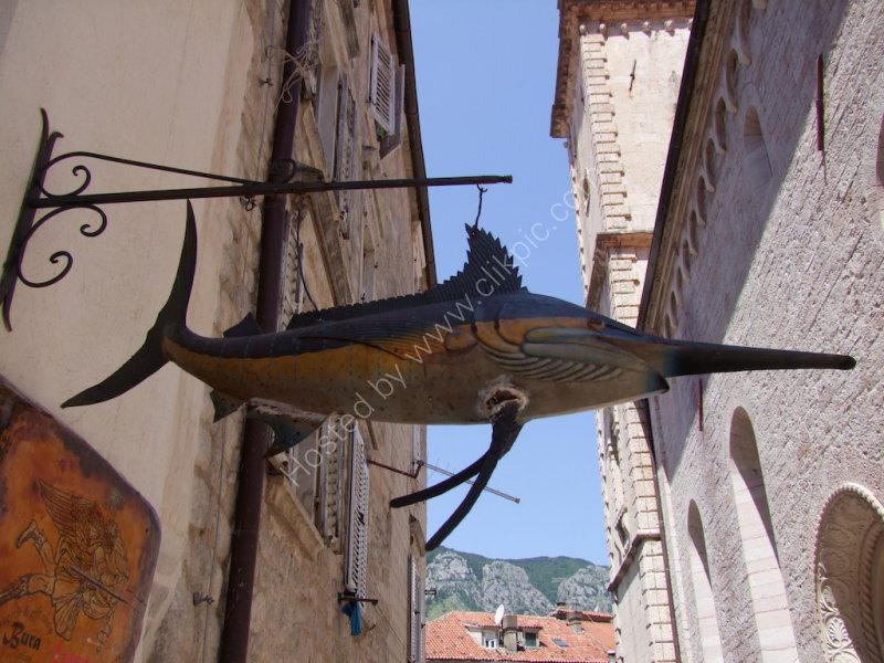 Fish Shop Signage, Kotor