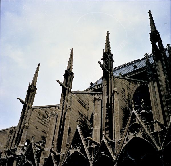 Flying Buttresses, Notre Dame Cathedral, Paris