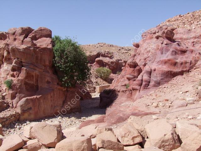 Eroded Sandstone Rock Formation, Petra
