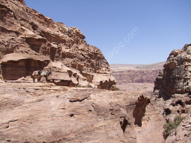 Walk to Ad-Dayr (Monastery), Petra