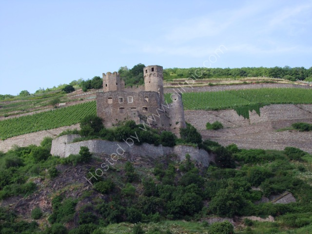 Castle on Banks of the Rhine River