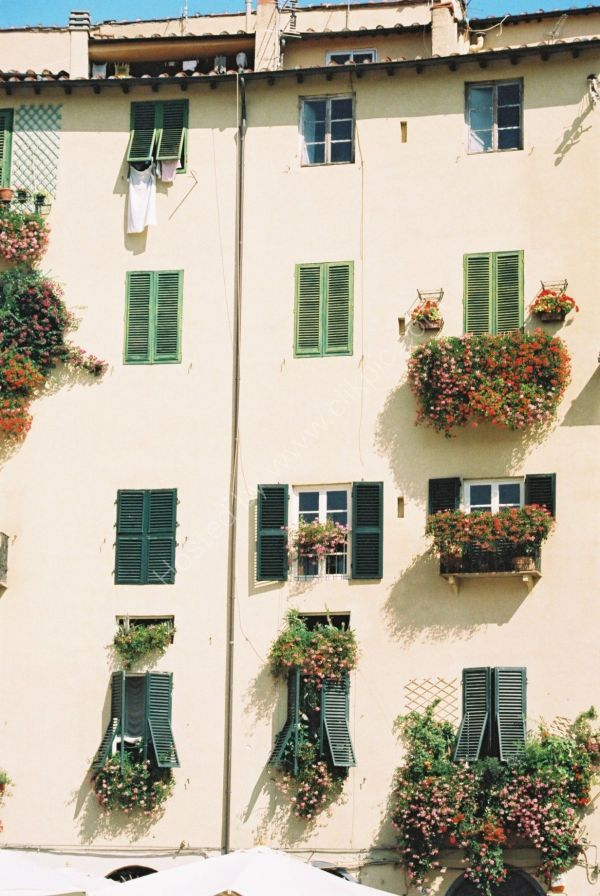 Houses, Lucca, Tuscany
