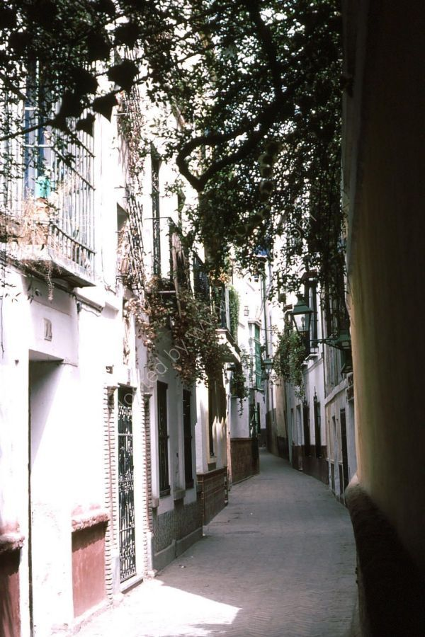 Typical Houses in Side Street, Seville