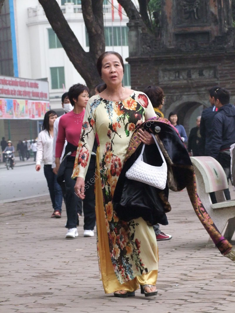 Well Dressed Vietnamese Lady